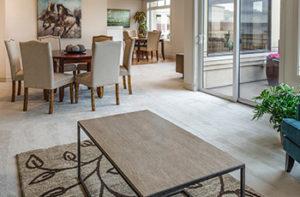 Clean-carpet-in-living-room-dining-room