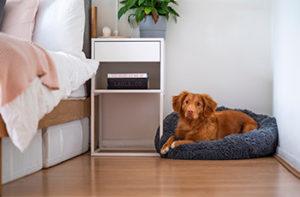 Wood-like laminate flooring in a bedroom